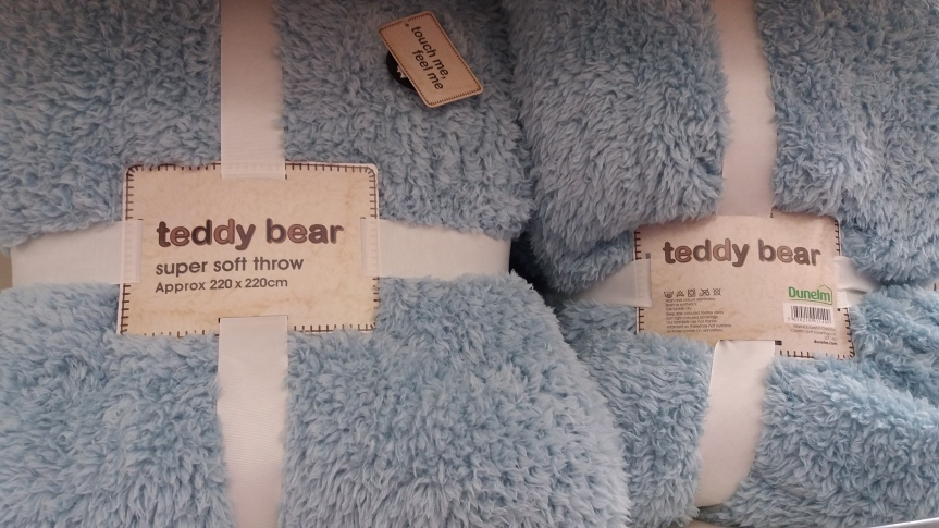 Campervan Kit: The Gorgeous Teddy BearBlanket