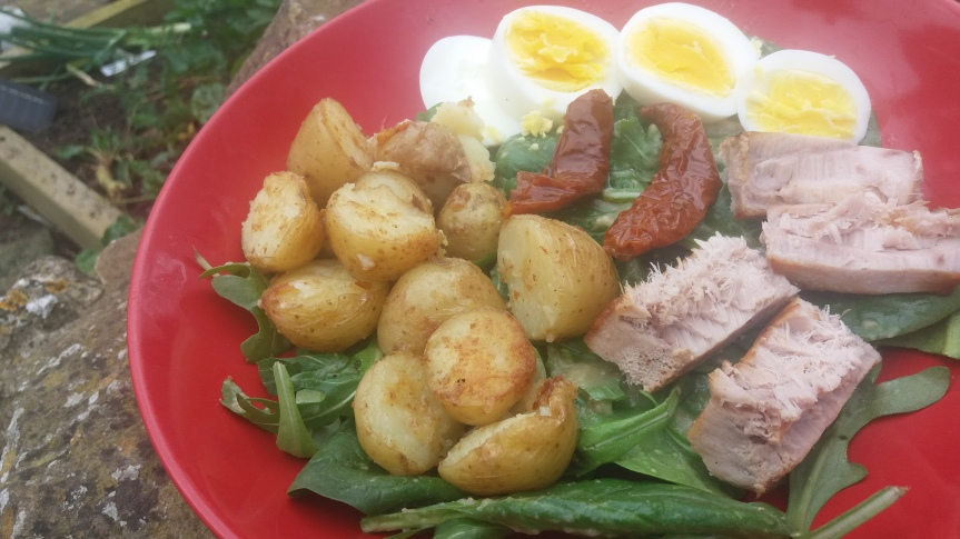 Luscious Lunches: The Nicoise Power Bowl