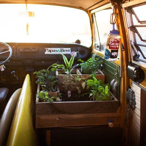 Campervan Design: Mini Salad Garden in Your Campervan